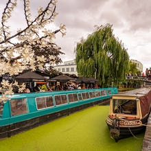 Waterbuses at Camden Lock