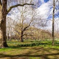 People walking to Buckingham Palace via Green Park