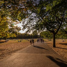 Sunset in Greenwich Park