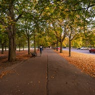 Greenwich Park is great for families