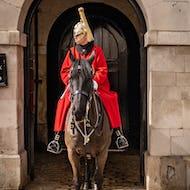 A horse guard guard