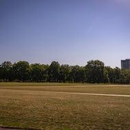 Open space in Hyde Park