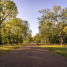 A broad pathway in Kensington Gardens