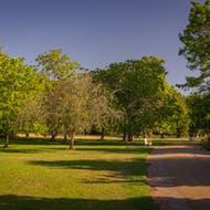 Lovely park view and a bench in Kensington Gardens