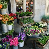 Flowers for sale outside of Liberty