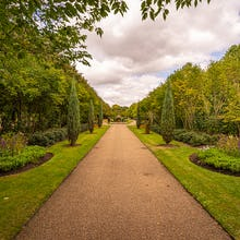 Regent's Park pathways