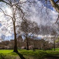 St James's Park views